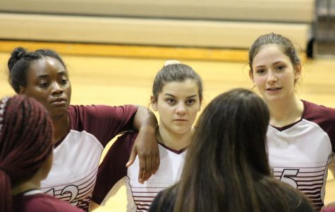 Volleyball team starts off season strong with high rankings